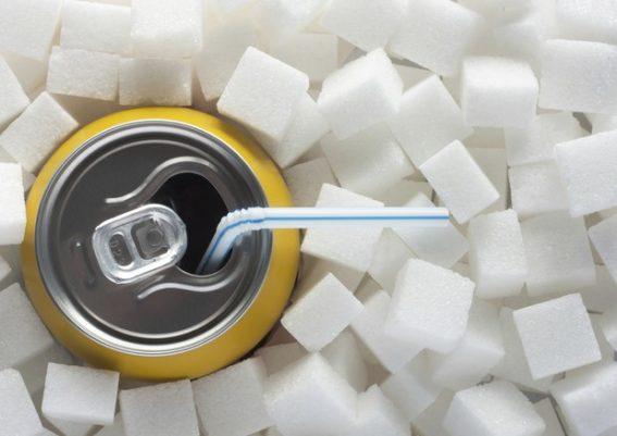 nutrizione-alfiero-molari-alimentazione-oggi
